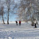 Заповедный башкирский лес